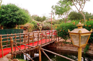 Open Air Restaurants In Ahmedabad 4